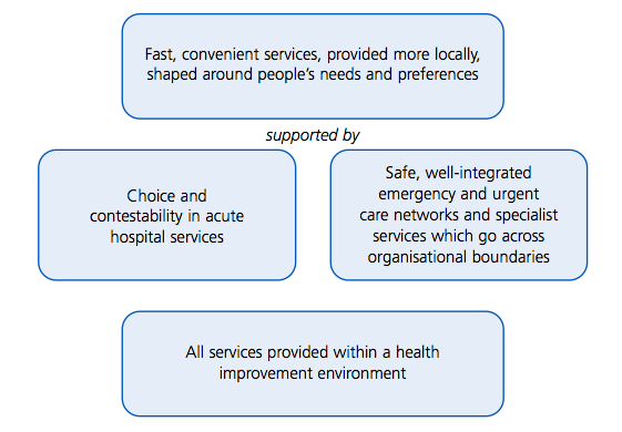 the-patient-led-nhs-vision